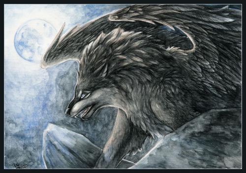 一匹来自北方的狼